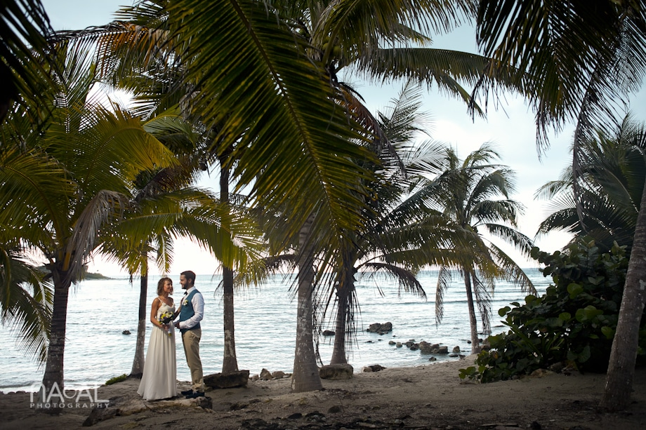 Beach wedding at Paamul -  - IMG 7725
