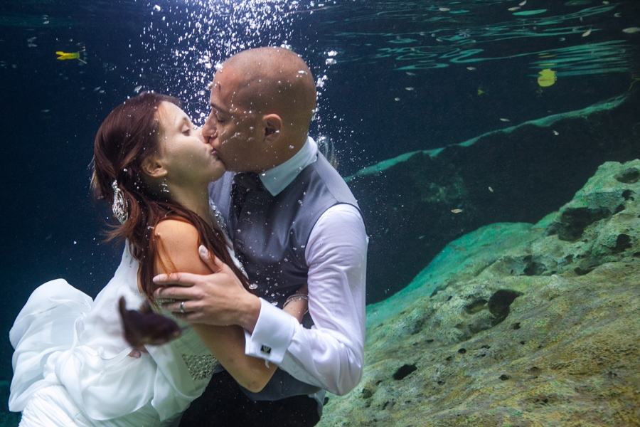Tudy & Elodie -  - Naal Wedding Photography 48