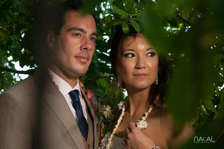 Michelle & Vinny -  - Naal Wedding 135