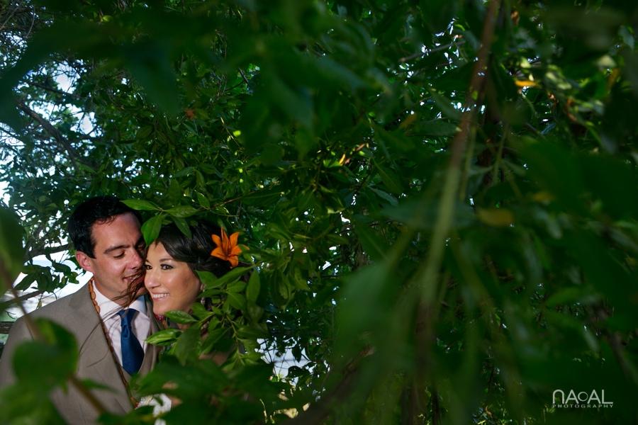 Michelle & Vinny -  - Naal Wedding 137