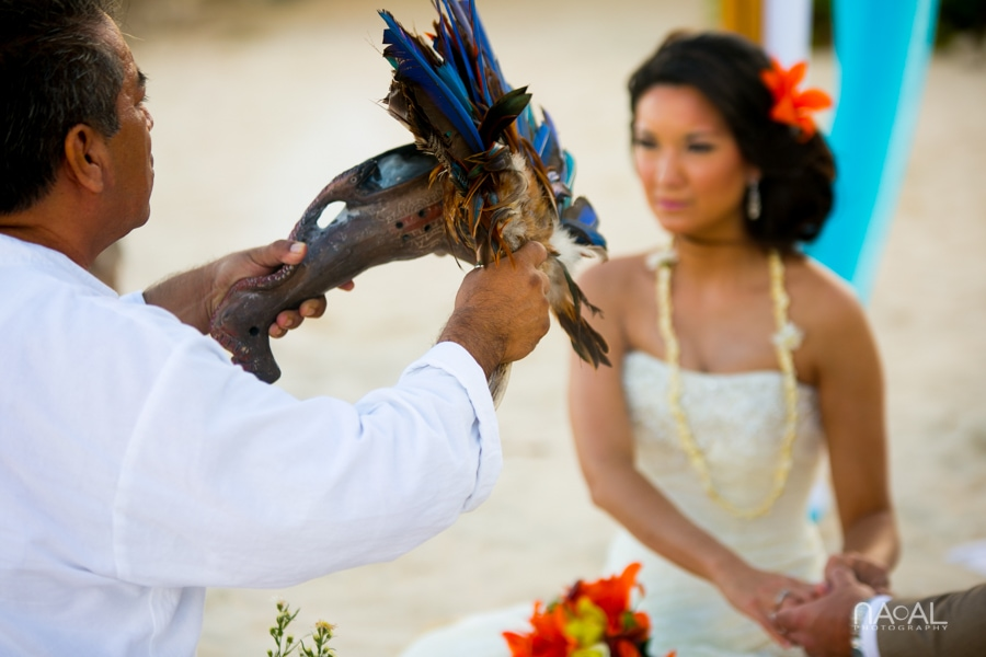 Michelle & Vinny -  - Naal Wedding 78
