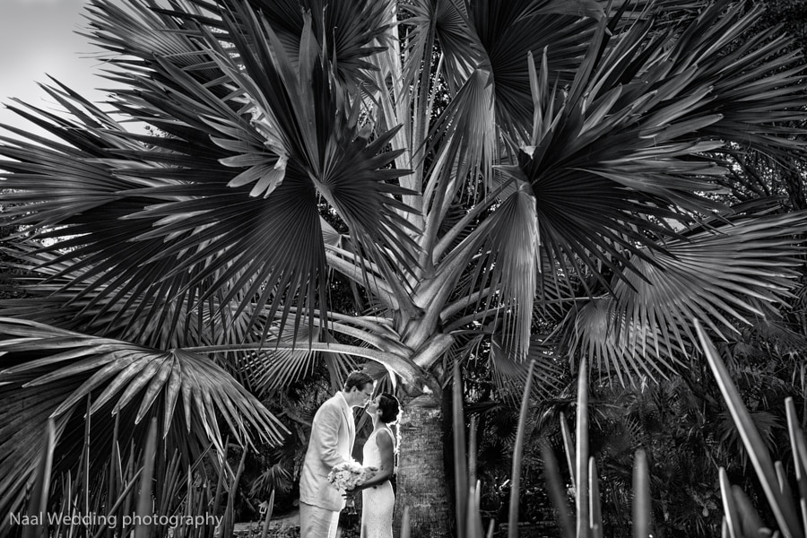 Mr & Mrs Hallagan -  - AB6A8123