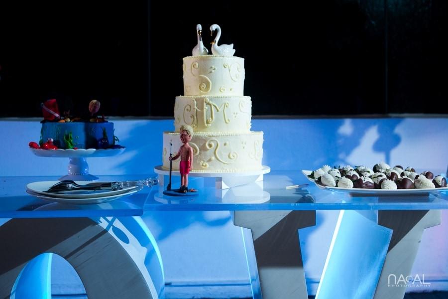 Cathy & Michael -  - Naal Wedding Photography 335