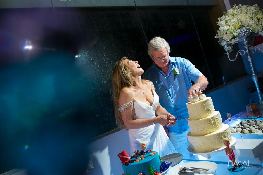 Cathy & Michael -  - Naal Wedding Photography 339