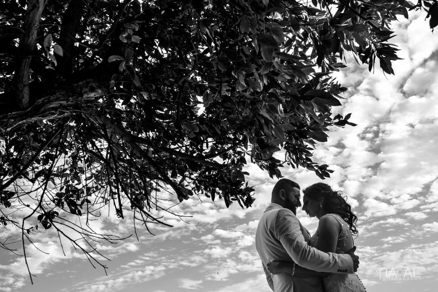 Sharon & Bob -  - Naal Wedding Photography 162