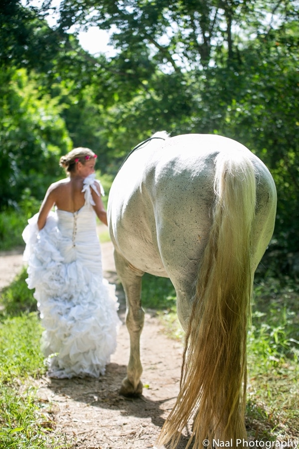 EQUESTRIAN BRIDAL PHOTO SESSION -  - NAAL PHOTOGRAPHY 12