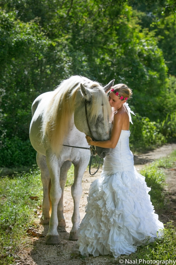 EQUESTRIAN BRIDAL PHOTO SESSION -  - NAAL PHOTOGRAPHY 15