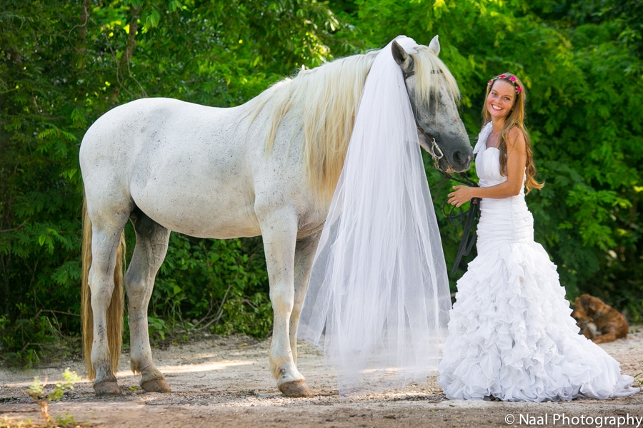 EQUESTRIAN BRIDAL PHOTO SESSION -  - NAAL PHOTOGRAPHY 25