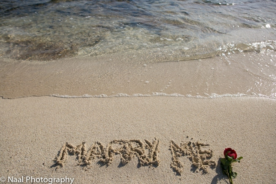 MARRIAGE PROPOSAL -  - NAAL wedding 1