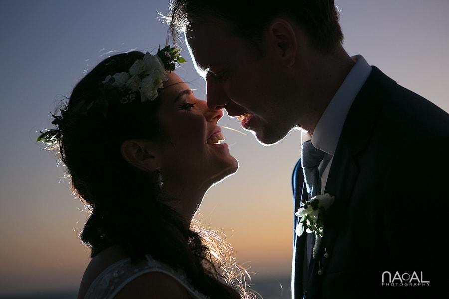 Diana & Dave -  - Naal Wedding Photo 308