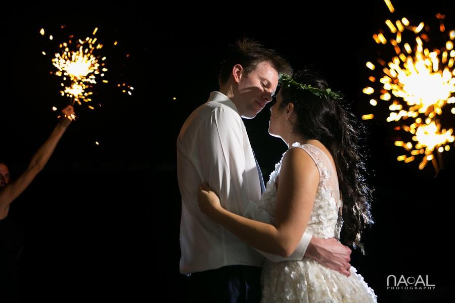 Diana & Dave -  - Naal Wedding Photo 403