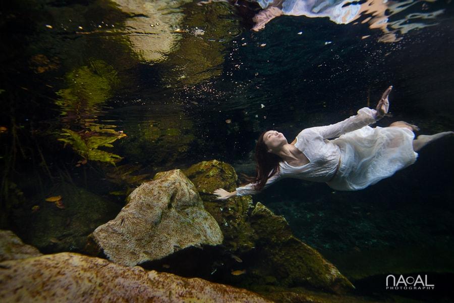 Michelle & Adam -  - Naal Wedding Photo 561