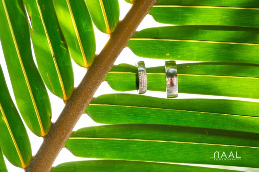 Wedding rings at Blue Venado Beach Club by Naal Wedding Photography
