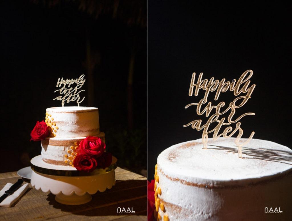 Blue Venado Beach Club wedding cake Naal Wedding Photography