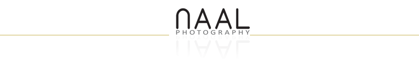 Naal Wedding Photography logo